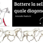 [:it]Battere la sella su quale diagonale?[:]